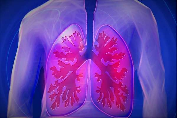 Read more about the article 5 Best Ways To Detox And Cleanse Your Lungs Naturally