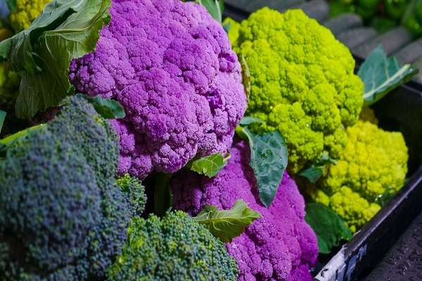 Read more about the article If You Want To Lose Weight, Eat More Antioxidant-Rich Foods